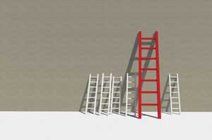 mgmt_ladders