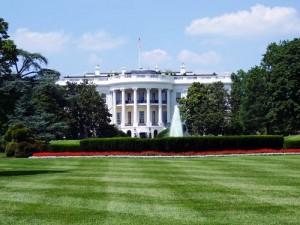 White House Stock